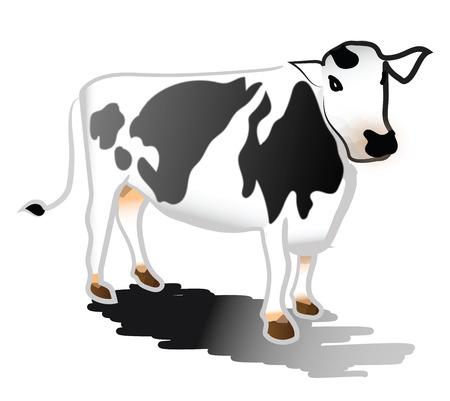 Una mucca in bianco e nero con la sua ombra sul disegno o illustrazione vettoriale a colori del terreno Vettoriali