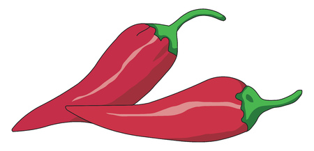 Two fresh red spicy pepper with green stem used to spice up the food vector color drawing or illustration