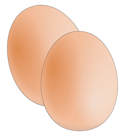 Farm fresh eggs to be served as boiled or omelette vector color drawing or illustration