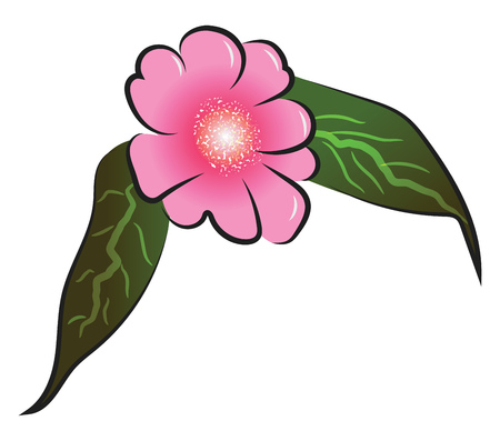 Pink flower with two longs leafs vector color drawing or illustration