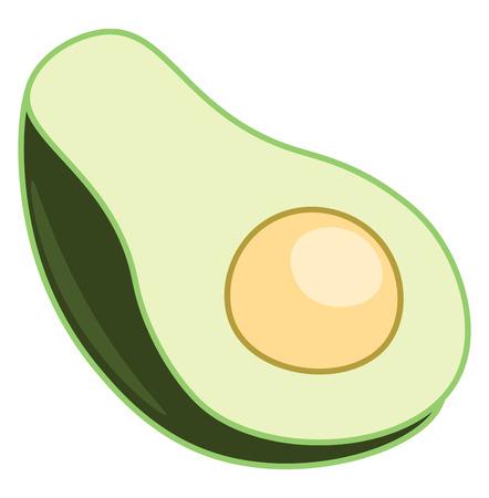 Green ripped half cut healthy avocado super food vector color drawing or illustration