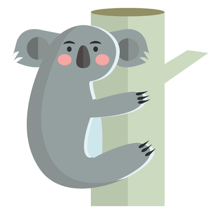 A cuddly koala animal is climbing tree vector color drawing or illustration