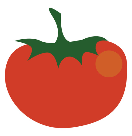 A red colored fruit resembling a tomato vector color drawing or illustration
