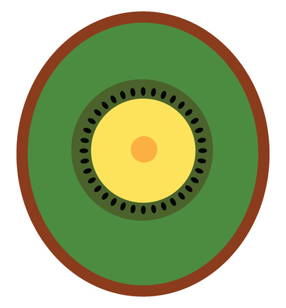 An image of a cut piece of a Kiwi vector color drawing or illustration