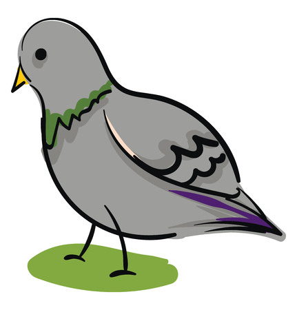 Simple cartoon grey pigeon vector illustration on white background