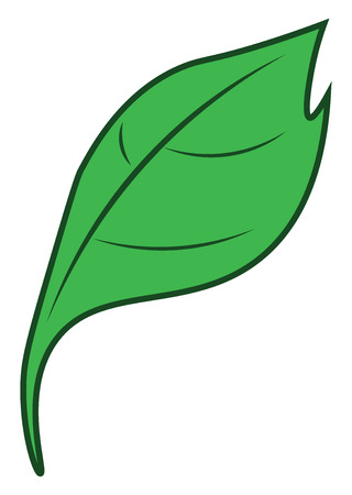 A cartoon of a green colored leaf vector color drawing or illustration