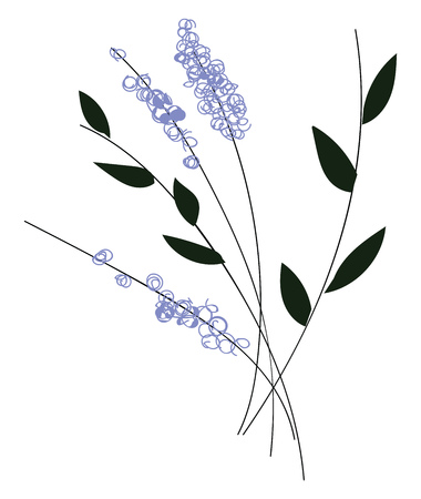Simple vector illustration of violet flowers with black leaves on black branch on white background