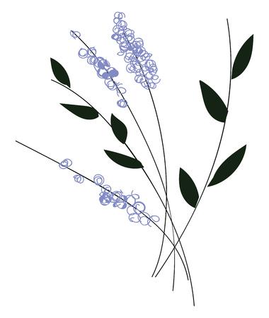 Simple vector illustration of violet flowers with black leaves on black branch on white background Banco de Imagens - 121018407
