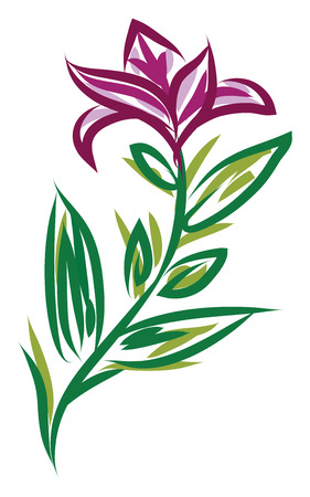 A pink flower along with its peduncle and green leaves around it vector color drawing or illustration