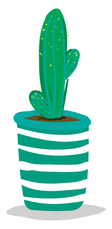 Tall cactus in decorative pot vector or color illustration Illustration