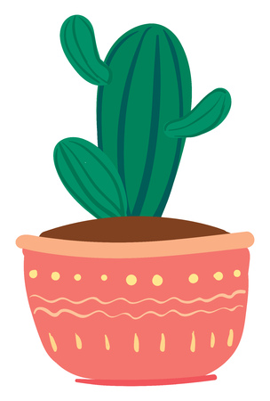 Striped cactus with small arms vector or color illustration
