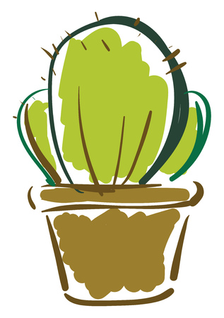 Prickly cactus in pot vector or color illustration