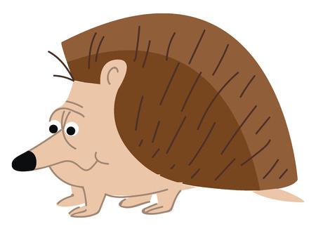 A spiny hedgehog vector or color illustration 矢量图像