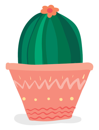 Dome shaped cactus with flower vector or color illustration