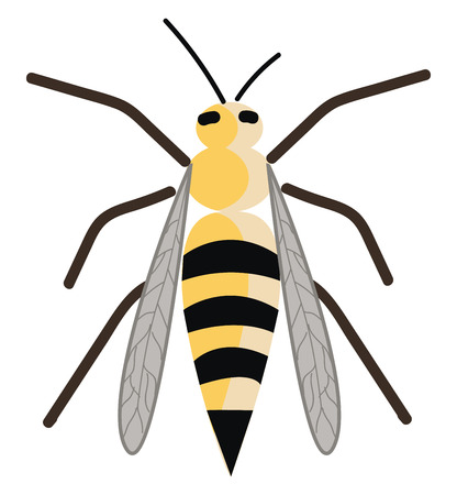 A cute wasp is sitting down vector or color illustration