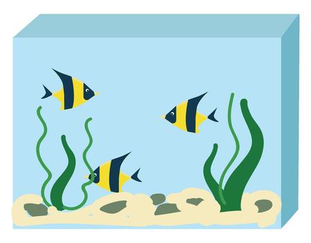Aquarium with three fishes vector illustration on white background Illustration