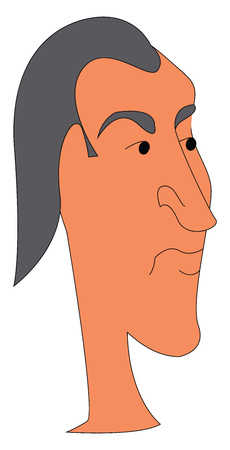 Portrait of a man with grey hair vector illustration on a white background