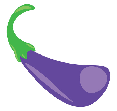 A small eggplant vector or color illustration