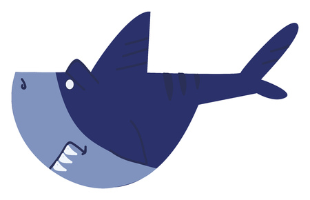 A blue shark with sharp tooth vector or color illustration