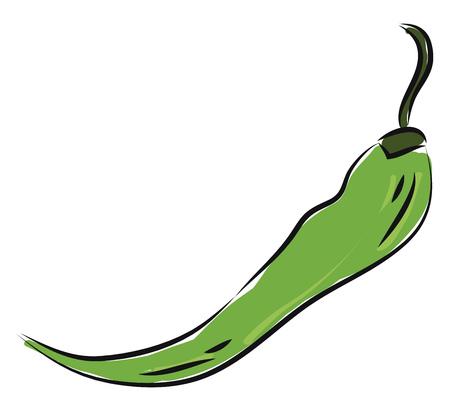 Hot green pepper illustration vector on white background Ilustrace