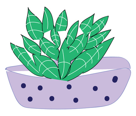 Purple vase with blue dots and green plant vector illustration on white background Illustration