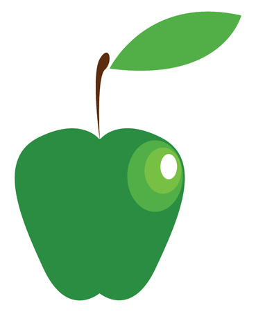 A nutritious green apple vector or color illustration