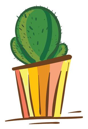 Cactus in colorful flower pot vector or color illustration Illustration
