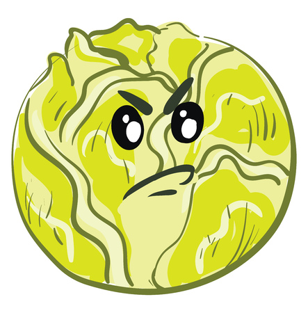 Angry cartoon green cabbage vector illustration on white background