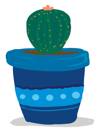 Cactus potted in bright blue flower pot vector or color illustration
