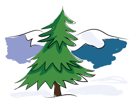 Outdoor Christmas tree vector or color illustration