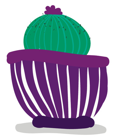 Painting of a round cactus plant vector or color illustration Illustration
