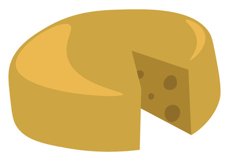 A truckle or wheel of cheese vector or color illustration