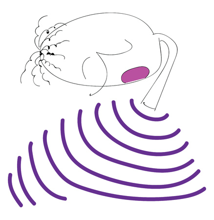 A boy with curly black hair is wearing a purple striped sweater and is looking down vector color drawing or illustration Çizim