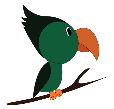 A green-colored Toucan bird perched on the branches of a tree has a tiny body and a very long-curved bill vector color drawing or illustration