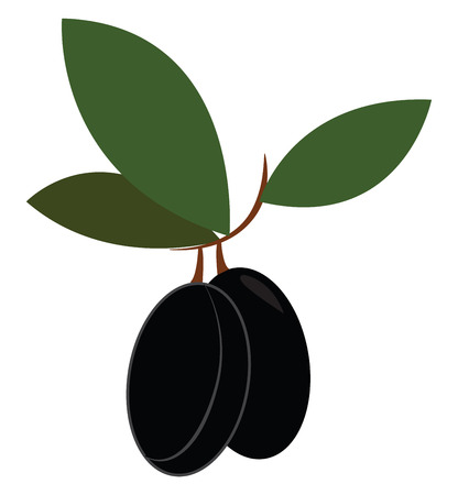 Black-colored cartoon olive with three oval-shaped dark-green leaves on a small branch vector color drawing or illustration