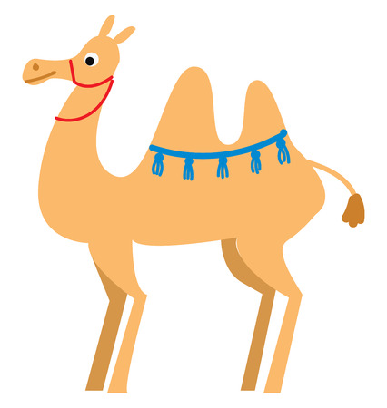 A light brown camel with blue tassels around the hump and a red rope around the neck vector color drawing or illustration