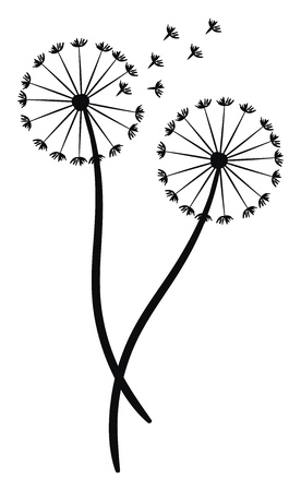 A silhouette of a dandelion blown by the wind vector color drawing or illustration Illustration