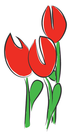A red color daffodil with two big eyes and a green stem vector color drawing or illustration