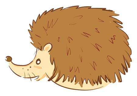 A fluffy brown hedgehog turned to the right side is with three whiskers vector color drawing or illustration  イラスト・ベクター素材