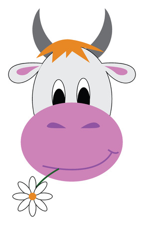 A white cow with two grey horns a pink nose chewing a flower vector color drawing or illustration