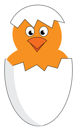A yellow chick hatching from a white egg gives a surprised look vector color drawing or illustration