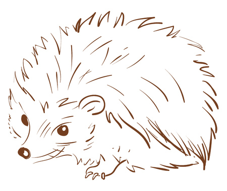 A brown sketch of a hedgehog animal with spines all over its circular-shaped body lies on the ground vector color drawing or illustration Illustration