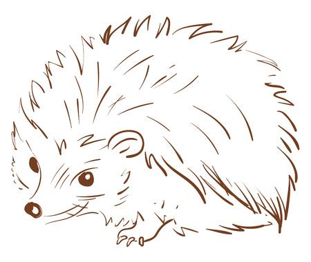 Un croquis brun d'un animal hérisson avec des épines sur tout son corps de forme circulaire se trouve sur le dessin ou l'illustration vectorielle au sol Vecteurs