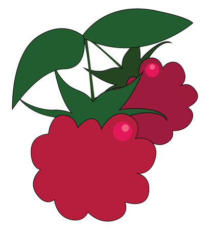 Clipart of two red fresh-looking raspberries with green leaves hang on a small branch and is ready to be plucked and enjoyed by someone vector color drawing or illustration
