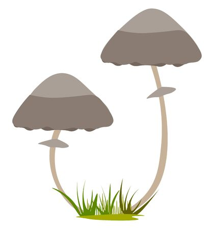 Two mushrooms growing illustration vector on white background