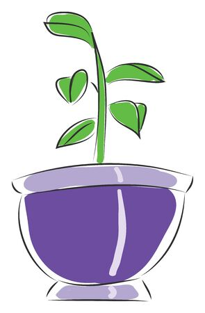 Pot with a small flower illustration vector on white background
