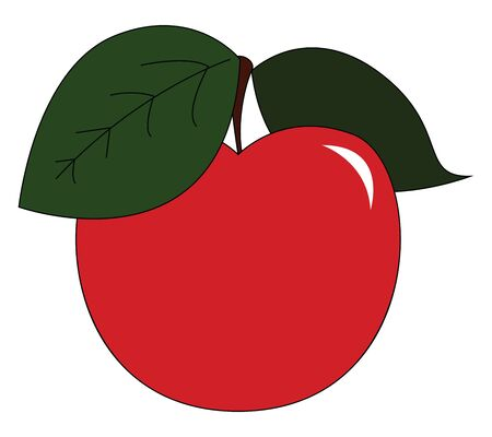 A fresh red apple plucked just from the tree vector color drawing or illustration