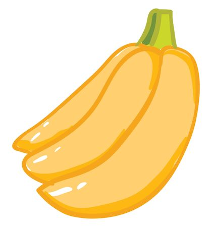 A bunch of fully ripe sweet bananas ready to be served vector color drawing or illustration