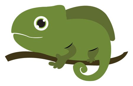 A big chameleon which has changed to green color which is on the tree vector color drawing or illustration 矢量图像