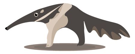 Cartoon of an extant mammal anteater with its big mouth and lengthy tail vector color drawing or illustration